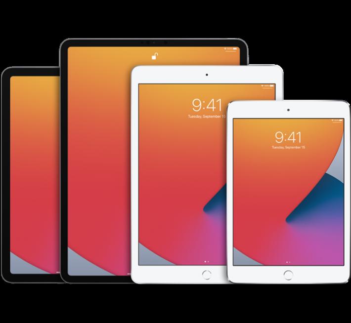 Apple iPads meerdere modellen zwart en wit
