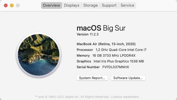 Mac overzicht gegevens